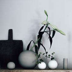 Vases from Cooee