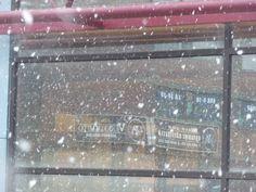 Satu Ylävaaran valokuvia: Omakuva ja lumimyräkkä