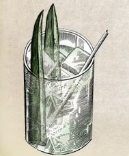 Hendrick's and Tonic. With cucumber spear. Just the way Christian likes it.  #fiftyshadesofgrey