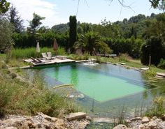 Natural Pool Designs a totem pole in the landscape adds a northwest touch to this swimming pool The Blissful Natural Pool At Orion B And Treehouse In The South Of France Photo