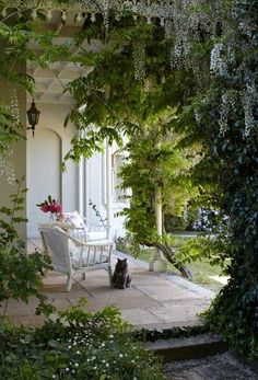 I love Wisteria. This is so romantic! Think of this on a warm, summer evening with candles hanging from the porch. Mmm, yeah!