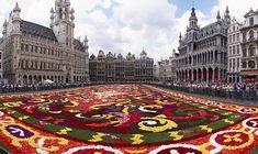 Brussels' flower carpet