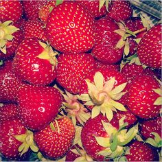 #instagram #strawberry