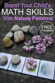 Help your child learn math patterns easily using these fun ideas and free printable patterning sheets combined with objects from nature! Suitable for kids aged 2 to 10! {One Time Through}