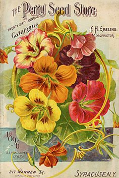 Vintage Labels Vintage Seed Catalog, Perry Seeds, Pansies - Shop Vintage Seed Catalog, Perry Seeds, Pansies Poster created by yesterdaysgirl. Personalize it with photos Vintage Diy, Vintage Labels, Vintage Postcards, Vintage Cards, Vintage Pictures, Vintage Images, Vintage Gardening, Organic Gardening, Gardening Blogs