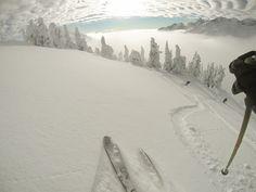 Powder Mountain Cat Skiing, B. Best Powder, Whistler, Skiing, Mountain, Canada, Cats, Places, Outdoor, Ski