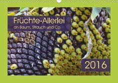 Früchte-Allerlei an Baum, Strauch und Co. - CALVENDO Kalender von Angelika Keller