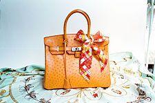 The famous Hermes Birkin Bag