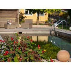 Naturpool - dein Kraftplatz im Garten.  www. timberra.com Living Pool, Outdoor Decor, Home Decor, Water Department, Microorganisms, Natural Garden, Architectural Materials, Natural Stones, Timber Wood