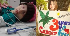 Diagnosed with cancer at the age of seven, Mykayla Comstock was declared in remission of T-cell acute lymphoblastic leukemia three years ago yesterday. Although her family credits cannabis for saving Mykayla's life and cannabis has been shown to kill cancer cells in the laboratory, the FDA still refuses to approve cannabis as a cancer treatment.