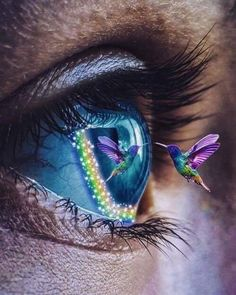Life is so beautiful. Full of colorful, lovely moments that make life a coat of beauty. Random images because I like them. Just a collection of beauty. Pretty Eyes, Cool Eyes, Beautiful Eyes, Eye Photography, Creative Photography, Eyes Artwork, Aesthetic Eyes, Eye Pictures, Crazy Eyes