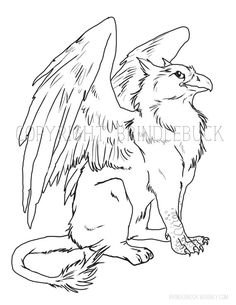 gryphon coloring page download child art adult by brindlebuck