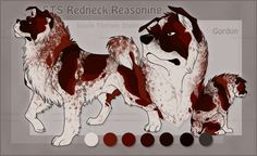 STS Dog- Gordon by ShockTherapyStables on DeviantArt
