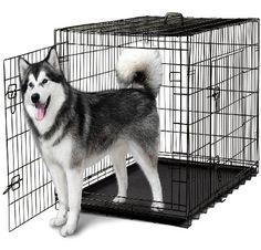 OxGord Double-Door Easy Folding Metal Pet Crate for Dogs, Cats, Rabbits - Various Sizes, 2016 Amazon Top Rated Small Animals  #Pet-Supplies