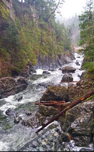 Explore the Sooke Potholes