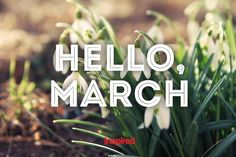 Best Collection of Hello March Pictures, Images, Photos and Wallpapers. Hello March 2015 and Happy March for Tumblr, Pinterest, We Heart it, Instagram.