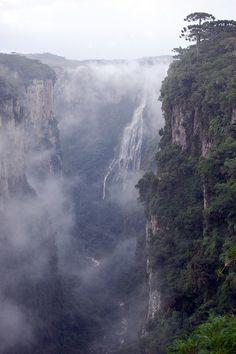 The Itaimbezinho is a primeval canyon where life lives on the vertical, not the horizontal   Aparados da Serra National Park, Rio Grande do Sul, Brazil