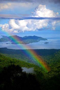 Rainbow In The Rain Forest - Yapan Island - Papau, Indonesia
