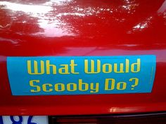 Saw this bumper sticker again today. Makes me chuckle every time.