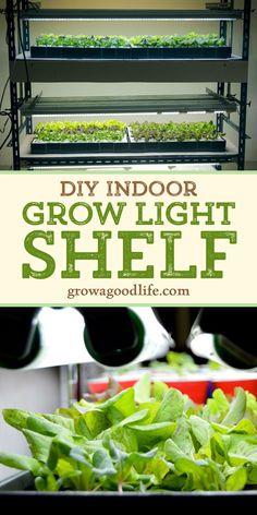 DIY Grow Light Shelf for Starting Seeds Indoors