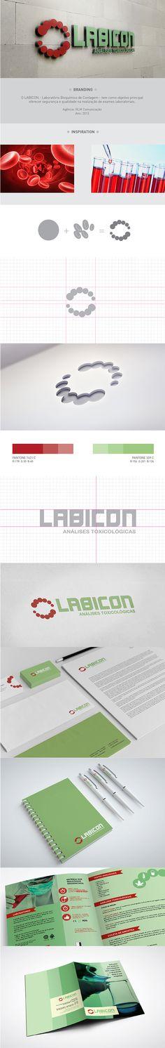 Identidade Visual - Labicon