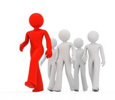 Perfil personal/profesional: Muestro el camino