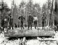 Woodsmen in northern Wisconsin