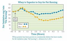 Whey is Superior to Soy for Fat Burning
