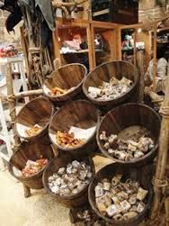 Image result for retail design pet store
