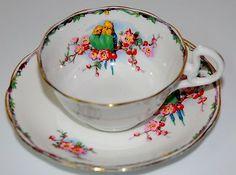 Royal Albert Vintage Cup and Saucer Budgies/lovebirds circa 1927-1935
