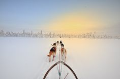 12 Badass Adventures for Your Next Great Escape | Dog Sledding in Sweden | FATHOM