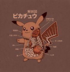 Pokemon Anatomy by artist Ryan Mauskopf