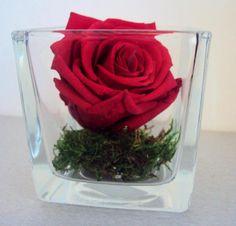 VASE en VERRE ROSE éternelle & MOUSSE NATURELLE fleur stabilisée préservée LUXE