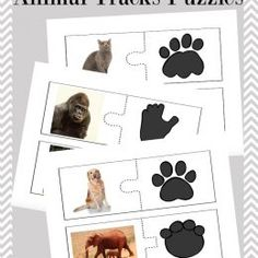 This is a post by Free Homeschool Deals contributor, Tara at Embark on the Journey. My daughter loves animals of all kinds. For three years, we studied anima Nature Activities, Science Activities, Preschool Activities, Animal Activities For Kids, Animal Footprints, Animal Tracks, Animal Science, Animal Habitats, Preschool Science