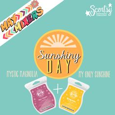 May Mixers ~ Sunshiny Day www.lynnebiniker.scentsy.us
