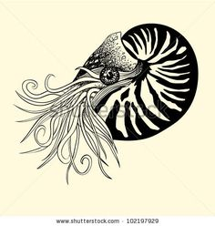 """Nautilus Tattoo - """"The ancient Nautilus Shell is a symbol of proportional perfection. It is the most inspiring and energetic form known to human kind. It is also the perfect paradox – having survived relatively unchanged for millions of years, the Nautilus Shell is, oddly enough, a symbol for expansion and renewal as it grows increasingly larger chambers throughout its life."""""""