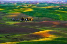 21 Colinas de Palouse Grasslands, Washington State, E.U.