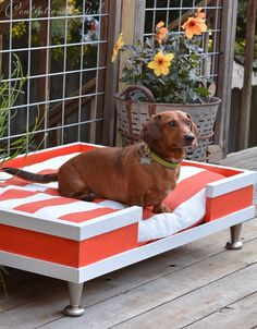 LOVE: modern pet bed striped cushion with instructions on how to build.I would love to DIY this dog bed for my Dane. Diy Dog Bed, Dog Rooms, Weenie Dogs, Doggies, Dachshund Love, Daschund, Pet Furniture, Diy Stuffed Animals, Pet Beds