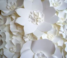 Extra large Paper Flower Backdrop -   white - by DragonflyExpression