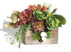 Succulent Potted Plant Arrangements | Design-Aholic: Succulents