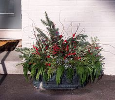 Trough planter of evergreens and berries Container Plants, Container Gardening, Lawn And Garden, Home And Garden, Metal Bins, Outdoor Christmas Decorations, Christmas Ideas, Winter Planter, Christmas Flower Arrangements
