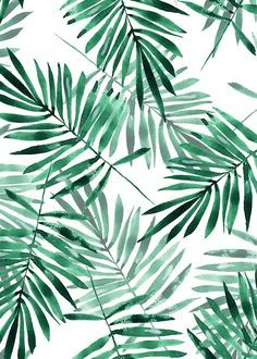 Palm leaves pattern Poster in the group Posters & Prints / Illustrations at Dese. - Palm leaves pattern Poster in the group Posters & Prints / Illustrations at Desenio AB Cute Backgrounds, Cute Wallpapers, Wallpaper Backgrounds, Iphone Backgrounds, Wallpaper Tumblr Lockscreen, Whatsapp Wallpaper, Palm Leaf Wallpaper, Iphone Hintegründe, Leaf Background