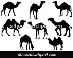 Camel Silhouette Vector Pack Download Camel Vectors
