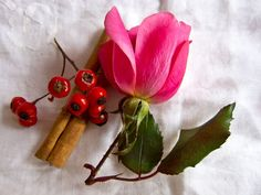 Delicious hawthorn tea recipe. Hawthorne stimulates heart function and has a large effect on blood flow which will improve sexual function as well as promote female engorgement.