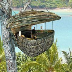 nid suspendu à Sonevra Kiri en Thaïlande