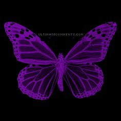 Blue And Purple Butterfly Background Purple Love, All Things Purple, Purple Rain, Shades Of Purple, Deep Purple, Purple And Black, Pink Purple, Purple Stuff, Butterfly Gif