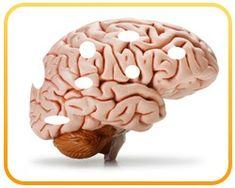 Das SCHLIMMSTE Lebensmittel Nr. 1, das Ihr Gehirn SCHÄDIGT (meiden!)