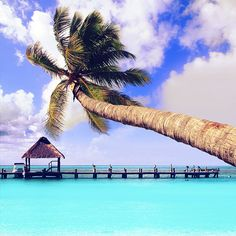 Das Meer kann so unfassbar blau sein ! 1 Woche Strandurlaub in #Cancun, Mexiko: 4* Hotel, Flug, Frühstück & Transfer ab 810 € p.P.: http://bit.ly/1xU7eGu