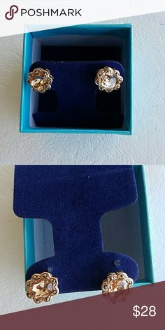 Morganite Gold Overlay new Earrings Genuine Morganite Gold Overlay  Sterling Silver Earrings still in box. Never worn. These are beautiful. Jewelry Earrings