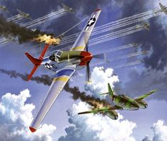 Tuskegee Airmen, Aviation Art, Hero, American